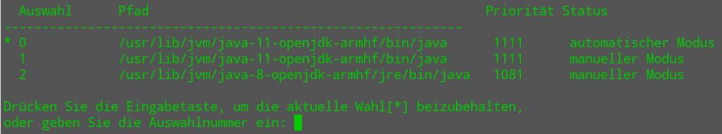 Java Version festlegen