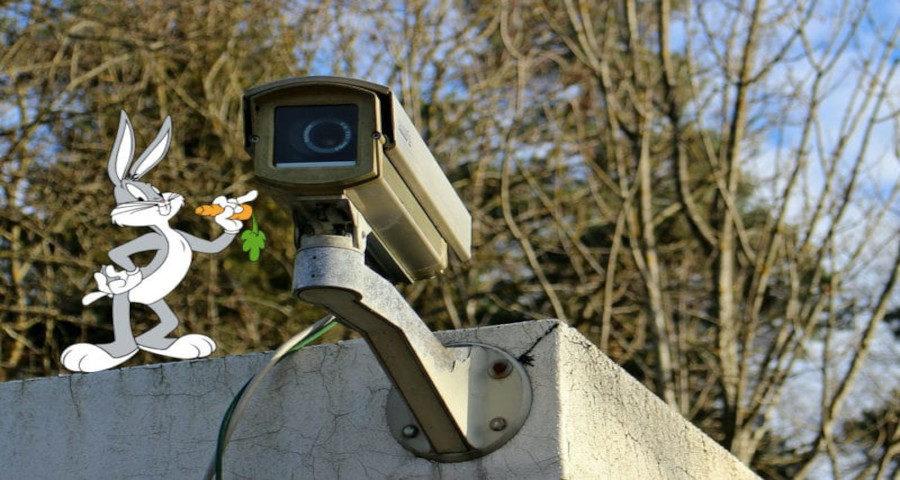 Handy als Überwachungskamera